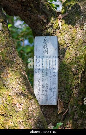 Eikando Temple in Kyoto, Japan - Stock Photo