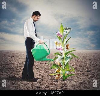 Businessman watering money plant - Stock Photo