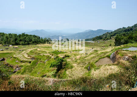 Landscape of Batutumonga, South Sulawesi - Stock Photo