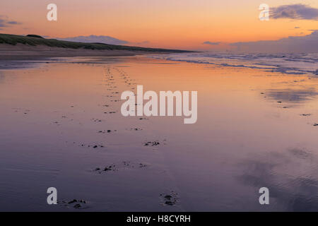 Pastel sunset reflections with footprints in the sand on the beach at Katwijk aan Zee, South Holland, The Netherlands. - Stock Photo