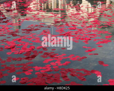 London, UK. 11th Nov, 2016. Silence in the square - Remembrance Day in London, Trafalgar square, London, UK © Nastia - Stock Photo