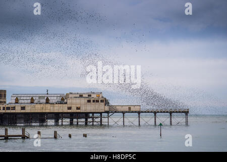 Aberystwyth Wales UK, Friday  11 November 2016  UK weather : On a grey overcast evening, with heavy rain forecast - Stock Photo