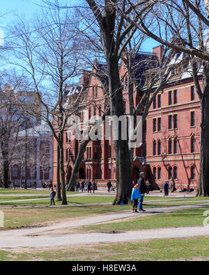 Life in Harvard Yard, historic heart of the campus of Harvard University, in Spring in Cambridge, MA, USA. - Stock Photo