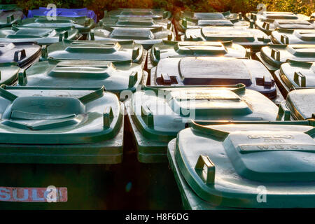 Many green plastic refuse wheelie bins lined up outside for tourists - Stock Photo