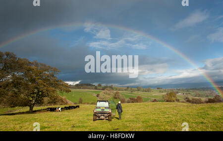 Farmer stood in field admiring a rainbow over the Eden Valley, Cumbria, UK. - Stock Photo