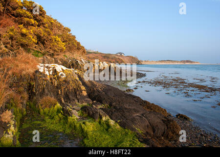Low tide in a sandy cove at Inchadowney beach in County Cork on the South Coast of Ireland reveals the ripples in - Stock Photo
