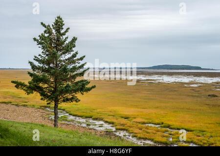 Low tide at Kamouraska, Quebec, Canada - Stock Photo