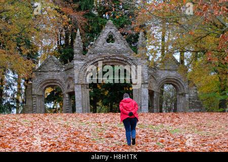 Shobdon, Herefordshire, UK November, 2016 - A walker enjoys an autumn walk at The Arches on a fine dry mild November - Stock Photo