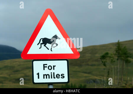 Triangular red and white road sign warning Horses for one miles - Stock Photo