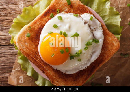 Sandwich with fried egg, ham, onions and cheese close up. horizontal view from above - Stock Photo