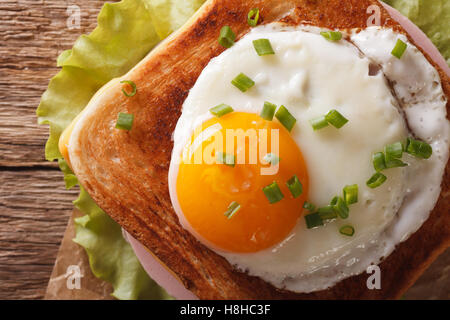Croque madame sandwich with a fried egg close-up. horizontal view from above - Stock Photo