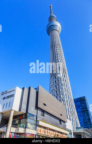 Tokyo, Japan January 25th, 2015: Tokyo Sky Tree, the highest free-standing structure in Japan. - Stock Photo