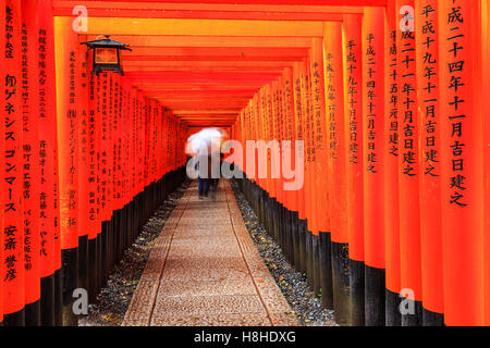 Kyoto, Japan. The gates in the Fushimi Inari shrine. - Stock Photo