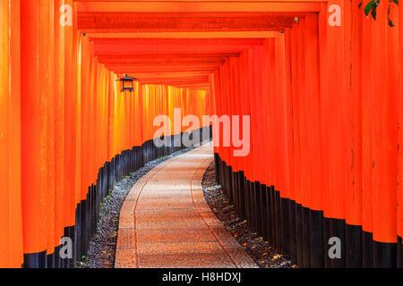Kyoto, Japan. The gates in the Fushimi Inari shrine. - Stock Photo