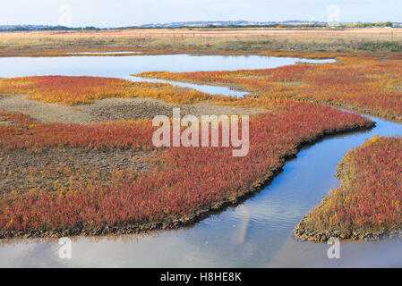Tidal marshes in Rye East Sussex - Stock Photo