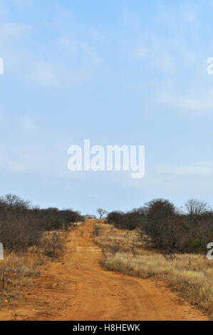 Safari in South Africa, savannah: a red sand dirt road in the Kruger National Park, the largest game reserve in - Stock Photo