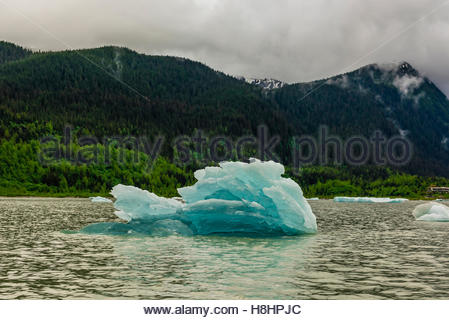 Floating ice, Mendenhall Lake, Juneau, Alaska USA. - Stock Photo
