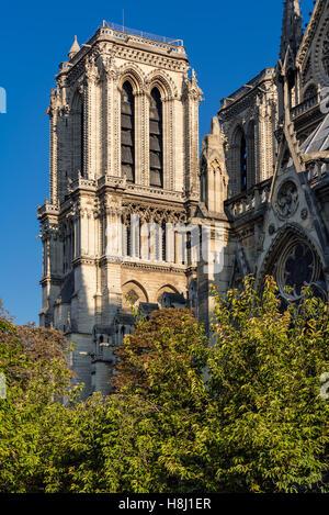 Architectural detail of Notre Dame de Paris Cathedral tower in summer morning light. Ile de la Cite, Paris, France - Stock Photo