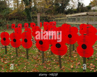 Somme Remembrance Poppy Day World War - Stock Photo
