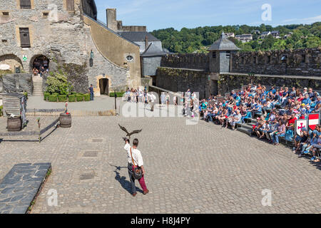 Bird of prey show in medieval castle of Bouillon, Belgium - Stock Photo
