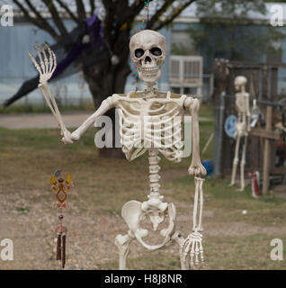 Skeleton used as decorations for Halloween in a small West Texas Town. - Stock Photo