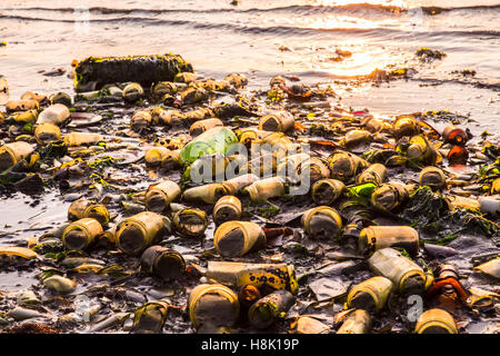 Glass bottles covering beach in Brooklyn New York City Dead Horse Bay landfill - Stock Photo