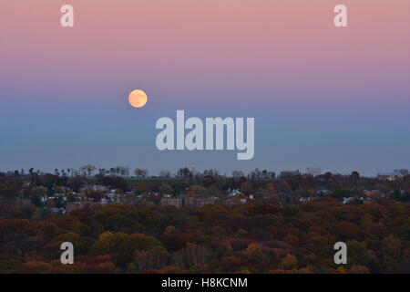 New York, USA. 13th Nov, 2016. The biggest full moon since 1948 which is also called The Beaver Moon rising in the - Stock Photo