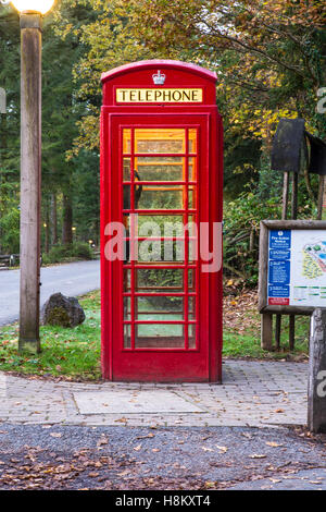 A traditional red British public telephone box at Centre Parcs Longleat Forest in Wiltshire - Stock Photo