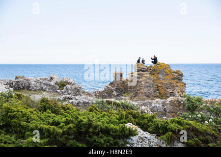 Mature man and boys (6-7, 8-9) taking pictures on rock at seashore - Stock Photo
