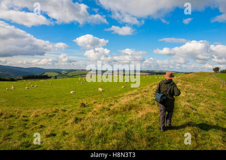A walker on Offa's Dyke in the Welsh countryside, near Knighton. - Stock Photo