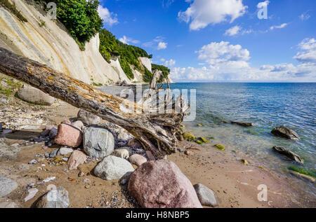 chalk cliff coast at Jasmund National Park, near Königsstuhl (King's Chair), island of Rügen, Mecklenburg-Vorpommern, - Stock Photo