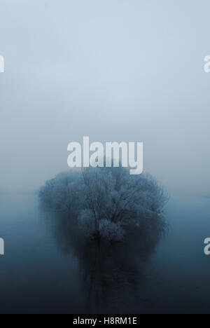Hoar frost-covered trees growing on peninsula - Stock Photo