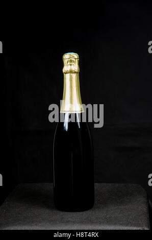 One sealed bottle of sparkling wine at a black background - Stock Photo