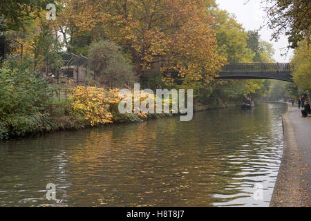 Regent's Canal near Regent's Park - you can see London zoo's warthog enclosure on the left, London - Stock Photo