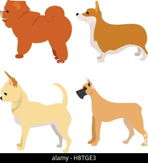 Set of purebred dogs chihuahua corgi and great dane, vector illustration - Stock Photo