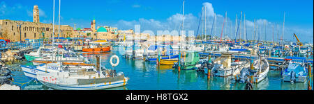 Panorama of the old port of Akko, with its medieval architecture and Sinan Basha Sea Mosque - Stock Photo
