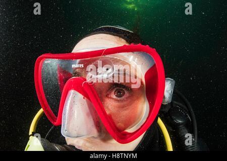 Scuba diver is watching a Craspedacusta sowerbii, freshwater jellyfish, phylum Cnidaria, invasive species. Lugano - Stock Photo