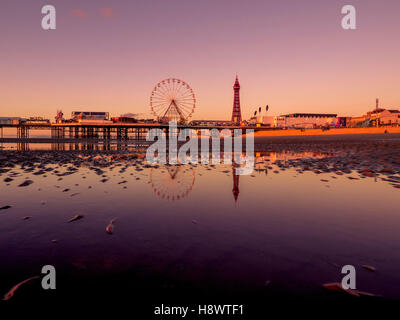 Blackpool Tower and Central Pier with reflection in water on beach at sunset, Lancashire, UK. - Stock Photo