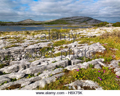Gealain Lough, The Burren, County Clare, Ireland - Stock Photo