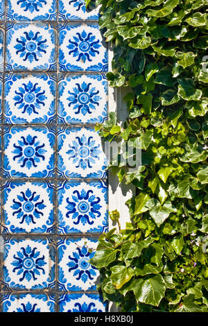 Traditional portuguese tiles  azulejos and green leaves - Stock Photo
