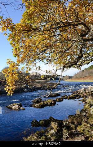 Autumn on the river Dee at Potarch Bridge in Royal Deeside, Aberdeenshire Scotland - Stock Photo