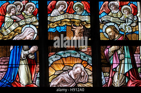 Stained Glass window depicting a Nativity Scene at Christmas in the Church of Alsemberg, Belgium. - Stock Photo