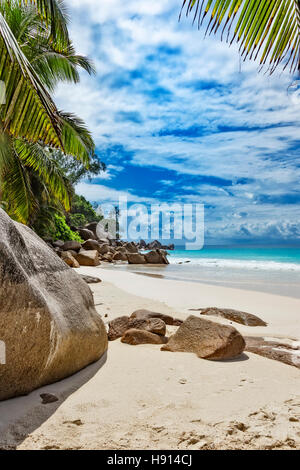 Small rocks in the sand on tropical beach, Seychelles islands - Stock Photo