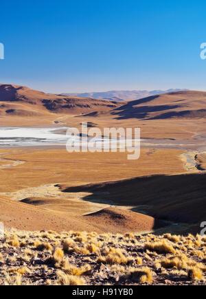 Bolivia, Potosi Department, Sur Lipez Province, View towards Laguna Morejon. - Stock Photo