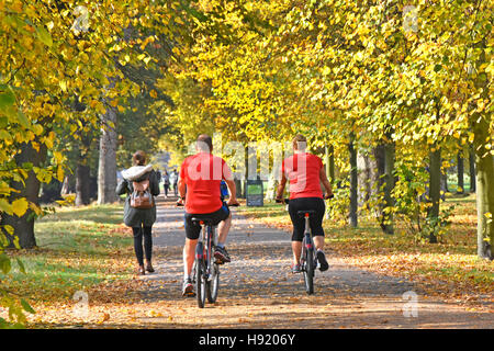 Kensington Gardens London UK Royal Park autumn trees leaves couple on Santander bike hire cycling on shared permitted - Stock Photo