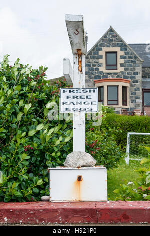 A Fresh Free Range Eggs sign with an honesty box outside a house in the Outer Hebrides. - Stock Photo