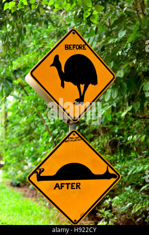 Cassowary warning sign on a road in Daintree National Park in the tropical north of Queensland, Australia. Cassowary - Stock Photo