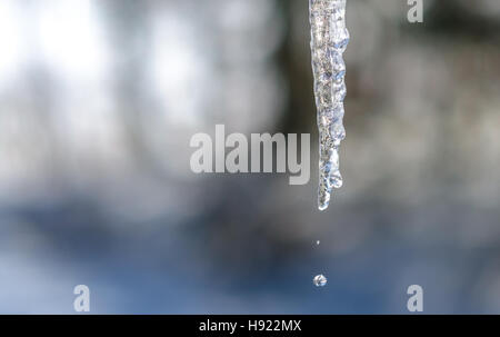 Abstract icicles sparkle, melt slowly in mild winter sun.  Hanging low from a roof edge. - Stock Photo