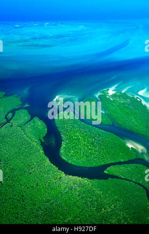 Mangroves along the coast of the Quirimbas National Park in Mozambique. - Stock Photo