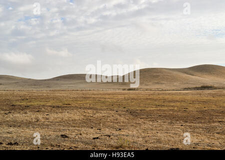 Dry rolling hills of California's central valley featuring brown, invasive grass in the end of the summer, on overcast - Stock Photo